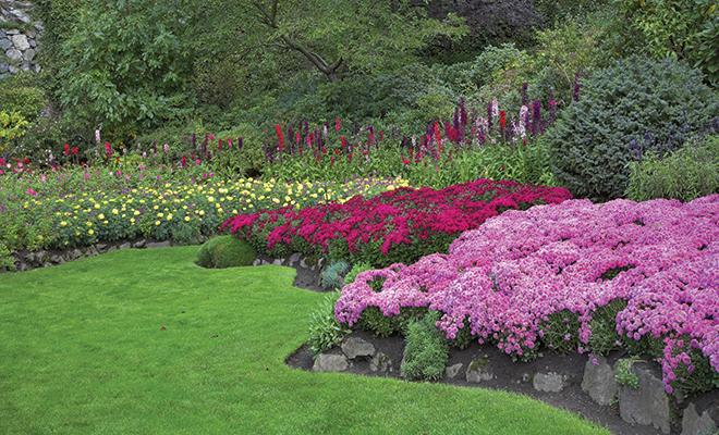 Planting A Pest Free Garden Herlife Magazine