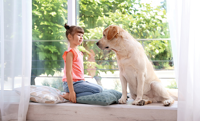 Pets Bring Kids With Autism Out Of >> For Kids With Autism These Special Dogs Can Make All The Difference